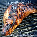 This grilled beef teriyaki tri-tip recipe is the best grilling recipe for a tri-tip roast. A teriyaki grilled tri-tip roast is tender and packed with flavor