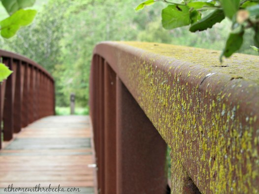 The Bridge with Green Moss