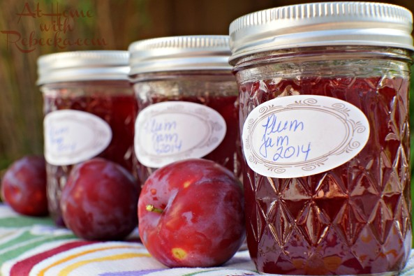Plum Jam - Canning plum jam is easy, fun, and leads to delicious plum recipes! Learning to can fresh plums will give you the opportunity to enjoy them all year long!
