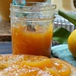 Persimmon lemon marmalade is a creamy, tart condiment, perfect for spreading onto toast and biscuits.