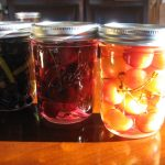 DRUNKEN FRUIT INFUSIONS