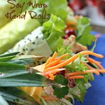 Cranberry Chicken Salad Handrolls